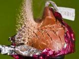 foto-galeri-mermi-meyveleri-delip-gecti-1010.htm