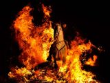 Hayvanların ateşle dansı