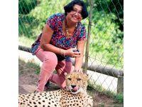 Çita dehşeti böyle görüntülendi!