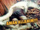 AMAN ALLAHIM!