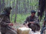 PKK'lı teröristlerin yollara ve menfez altlarına döşedikleri bombal