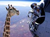 Uzaydan yalnız atlamadı