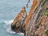 foto-galeri-olume-meydan-okuyanlar-15861.htm