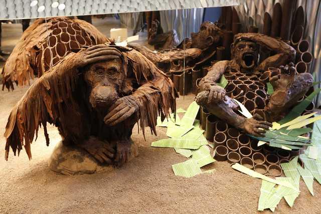 En Tatlı Maymun Foto Galerisi Resim 2