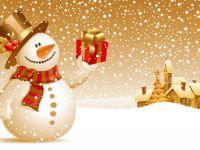 2013'te kaç gün resmi tatil var?