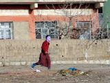 PKK'lı cenazesinde ortalık karıştı!