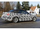 BMW 2-Series Convertible poses for the camera