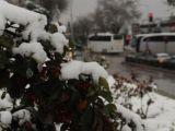 Edirne'de Lapa Lapa Yağan Kar Şaşırttı