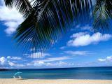 Dünyanın En İyi Kumsalları