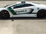 Dubai Polisine Ferrari