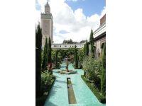 Sehit düşen müslümanların anısına Paris Büyük Camii
