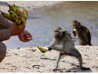 foto-galeri-hayvanlar-aleminin-o-anlari-3846.htm