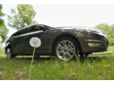 foto-galeri-ford-and-dandelions-4831.htm