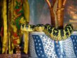 foto-galeri-dunyanin-tapinaklari-542.htm