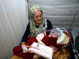 foto-galeri-24-saat-icinde-10-bebek-dunyaya-geldi-7830.htm