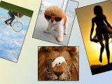foto-galeri-sanal-alemin-en-renkli-kareleri-8225.htm