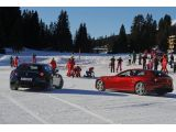 Ferrari FFs go slalom skiing with Fernando and Felipe