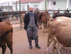 Malatya Canlı Hayvan Pazarı Açıldı - Malatya