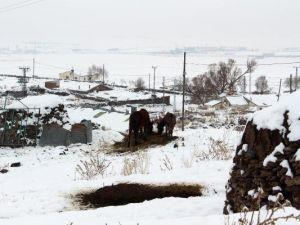 Erzurumun Tekman: -24,5