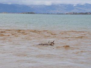 Eğirdir Gölünü, Derelerden Akan Kirli Su ve Atıklar Kirletiyor