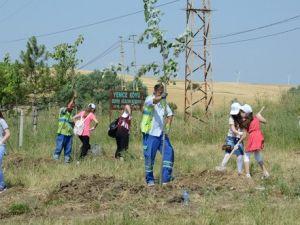 Çorluda Ağaç Dikme Kampanyası Düzenlendi