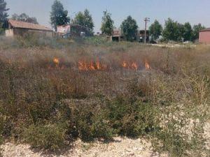 Aşırı Sıcaklar Ani Yangınlara Yol Açıyor