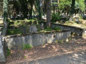 Şehir Mezarlığında Bakım Çalışmaları Sürüyor