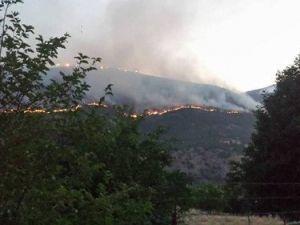Bingölde İki Gündür Devam Eden Orman Yangını Köylere Yaklaşıyor