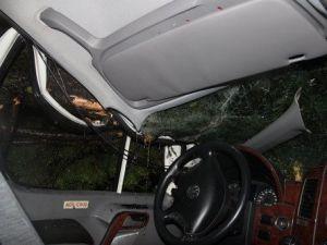 MHPli Adayları Taşıyan Aracın Üzerine Ağaç Devrildi
