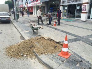 Düzce Belediyesi, Kaldırım Taşlarını Onarıyor