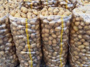 Satış Fiyatı 40 Kuruşa Düşen Patates Depolarda Bekletiliyor