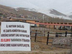 Bayburt Hayvan Pazarı, Nepal Tipi Şap Virüsü Nedeni ile Kapatıldı