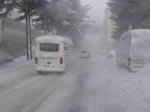 Bitliste Yoğun Kar Yağışı Hayatı Olumsuz Etkiliyor