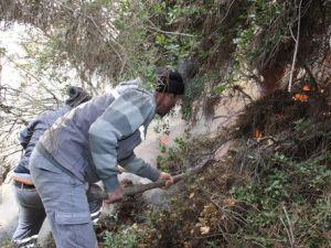 Gelibolu Yarımadasında Orman Yangını Çıktı