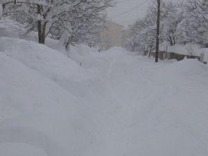 Bitliste 300 Köy Yolu Kapandı, Evler Kar Altında Kayboldu