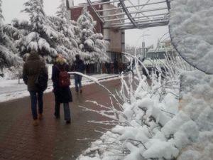 Kocaeli Merkezde Kar Yok ama Okullar Tatil