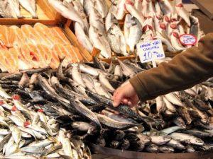 Kar Yağdı Balıkçının Yüzü Güldü