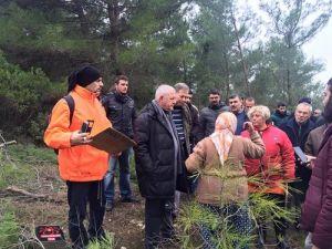 CHPliler Ağaç Katliamı Yapılan Ovacıka Gitti, Kesim Durdu