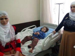 Küçük Kızın Karnından 52 Adet Solucan Çıkarıldı