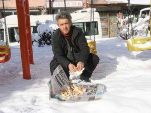 Vatandaşlar Aç Kuşlara Yiyecek Bırakıyor