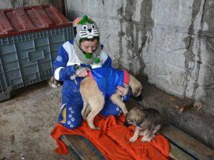 Bitlisteki Köpeklere Soğuğa Karşı Elbiseli Koruma