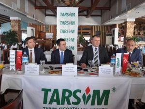 Antalyada 3 Bine Yakın Çiftçi, Don ve Hortumdan Etkilendi
