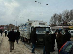 Temaddan Bayır-Bucak Türkmenlerine Yardım