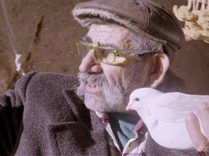 Kapadokyada Güvercinlerin Işık İzi Gösterisi