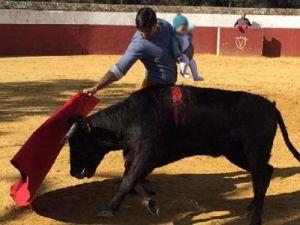 Matadorun 5 Aylık Çocuğuyla Boğa Güreşi Yapması Tepki Topladı