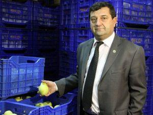 İsveçli Firmalar Bursadan Meyve Sebze İstiyor