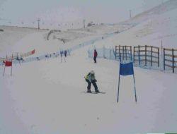 Kayakçılar Avusturya'ya Çıkartma Yaptı - Erzurum