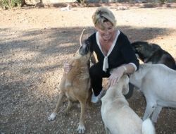 Cins Köpekler Fethiye Belediyesi Hayvan Barınağında Sahip Bekliyor - Muğla