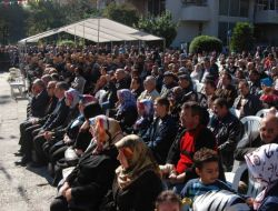 Orhangazi'de Zeytin Festivali - Bursa