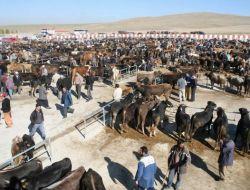 Sorgun Belediyesi Canlı Hayvan Pazarı Törenle Hizmete Açıldı - Yozgat